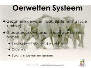 oerwetten systeem.001